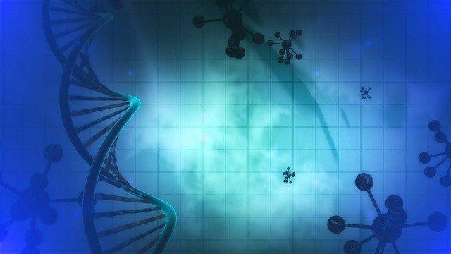 enzim nedir resim