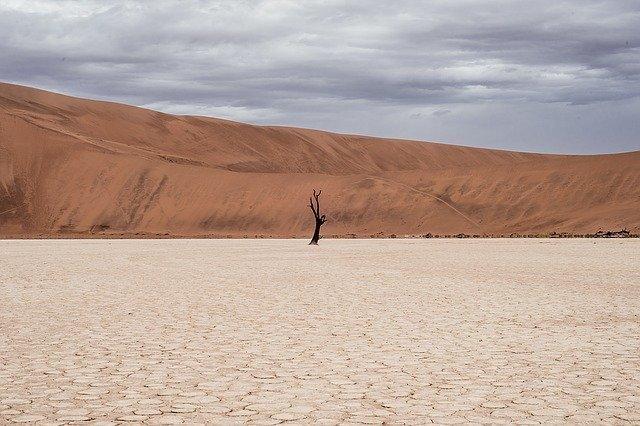 col nedir col ozellikleri - Çöl Nedir? Çöller Nasıl Oluşur Ve Çöllerin Özellikleri