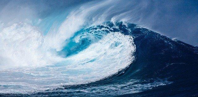 Dalga nedir( okyanus nedir)